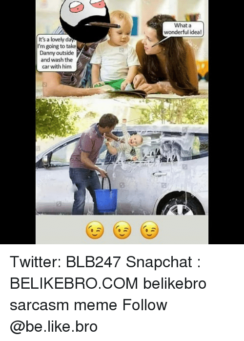 Be Like, Meme, and Memes: What a  It's a lovely da  I'm going to take  Danny outside  and wash the  car with him Twitter: BLB247 Snapchat : BELIKEBRO.COM belikebro sarcasm meme Follow @be.like.bro