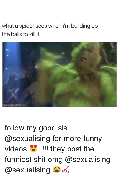 Funny, Omg, and Shit: what a spider sees when i'm building up  the balls to kill it  OVIECLIPS.COM follow my good sis @sexualising for more funny videos 😍 !!!! they post the funniest shit omg @sexualising @sexualising 😂💅🏻