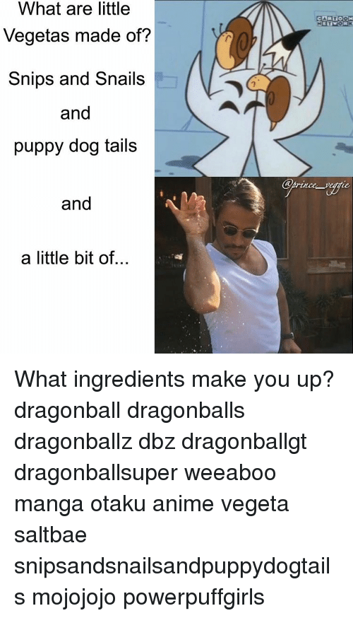 Dragonball, Memes, and Puppies: What are little  Vegetas made of?  Snips and Snails  and  puppy dog tails  and  a little bit of...  CARTOON What ingredients make you up? dragonball dragonballs dragonballz dbz dragonballgt dragonballsuper weeaboo manga otaku anime vegeta saltbae snipsandsnailsandpuppydogtails mojojojo powerpuffgirls