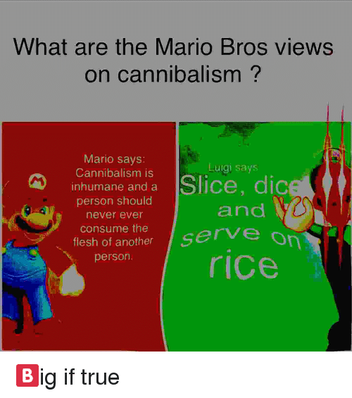 True, Mario, and Never: What are the Mario Bros views  on cannibalism?  Mario savs:  Cannibalism is  nhumane and a  person should  never ever  consume the  flesh of another  person  Luigi says  and  ice