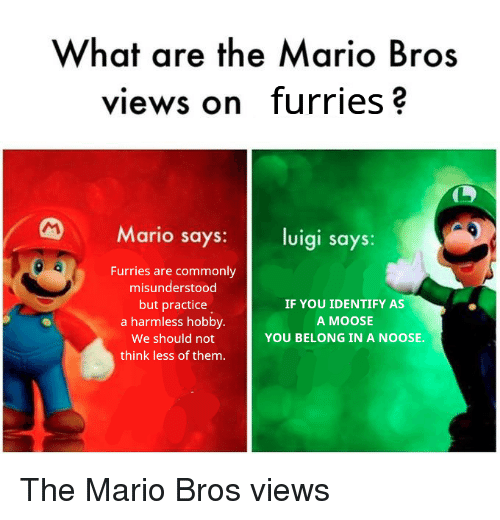 Mario, Moose, and Mario Bros: What are the Mario Bros  views on furries?  Mario says: luigi says:  Furries are commonly  misunderstood  but practice  a harmless hobby.  We should not  think less of them.  IF YOU IDENTIFY AS  A MOOSE  YOU BELONG IN A NOOSE. The Mario Bros views