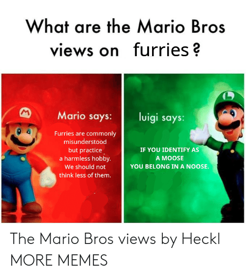 Dank, Memes, and Target: What are the Mario Bros  views on furries?  Mario says: luigi says:  Furries are commonly  misunderstood  but practice  a harmless hobby.  We should not  think less of them.  IF YOU IDENTIFY AS  A MOOSE  YOU BELONG IN A NOOSE. The Mario Bros views by Heckl MORE MEMES