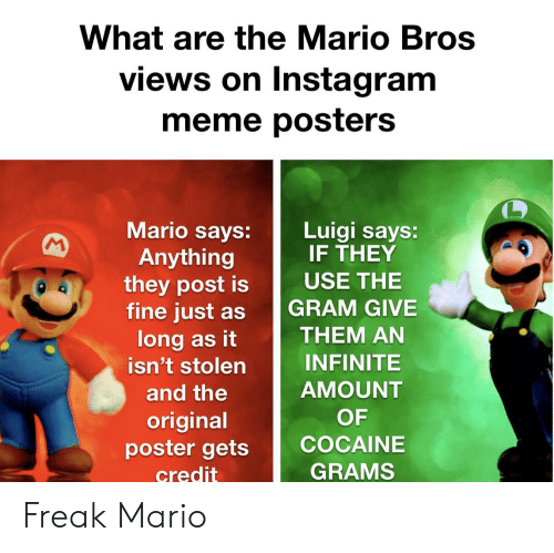 What Are The Mario Bros Views On Instagram Meme Posters