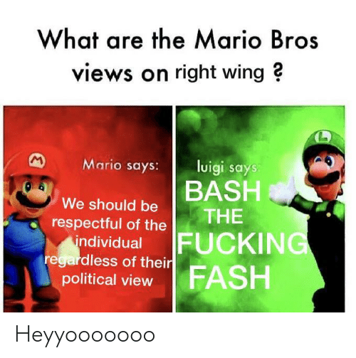 What Are The Mario Bros Views On Right Wing Mario Says