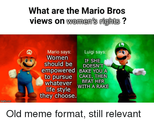 What Are The Mario Bros Views On Women S Rights Luigi Says Mario