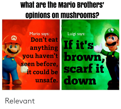 What Are The Mario Brothers Opinions On Mushrooms Mario Says