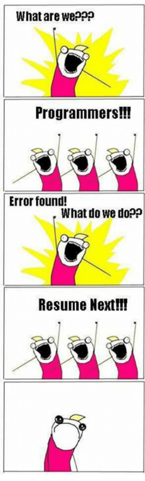 What Are Weppp Programmers Error Found What Do We Doop Resume