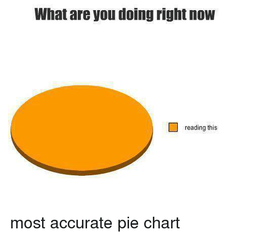What Are You Doing Right Now Reading This Most Accurate Pie Chart