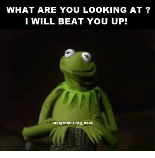 25+ Best Memes About Kermit The Frog