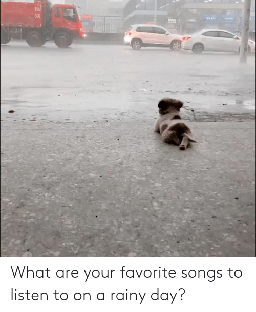 Dank, Songs, and 🤖: What are your favorite songs to listen to on a rainy day?