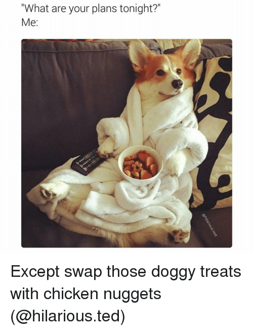 """Girl Memes, Swap, and Chicken Nuggets: """"What are your plans tonight?  Me: Except swap those doggy treats with chicken nuggets (@hilarious.ted)"""