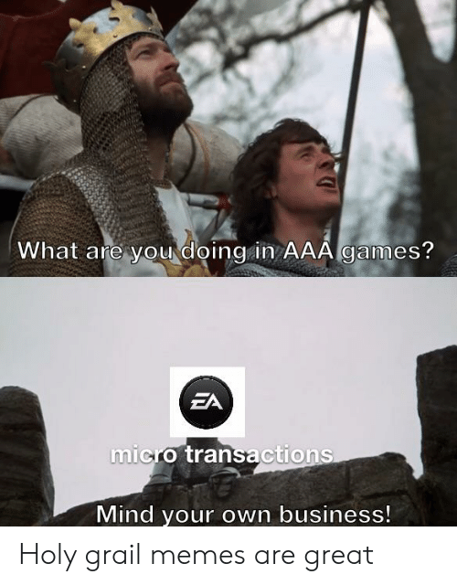 Memes, Reddit, and Business: What are yourdoing in AAA games?  EA  micro transactions  Mind your own business! Holy grail memes are great