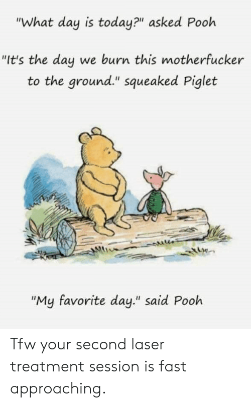 """Tfw, Today, and Laser: """"What day is today?"""" asked Pooh  """"It's the day we burn this motherfucker  to the ground."""" squeaked Piglet  Iti  """"My favorite day."""" said Pooh Tfw your second laser treatment session is fast approaching."""