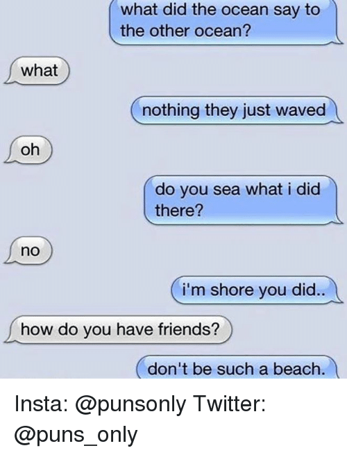 Friends, Puns, and Twitter: what did the ocean say to  the other ocean?  what  nothing they just waved  oh  do you sea what i did  there?  no  i'm shore you did..  how do you have friends?  (don't be such a beach Insta: @punsonly Twitter: @puns_only