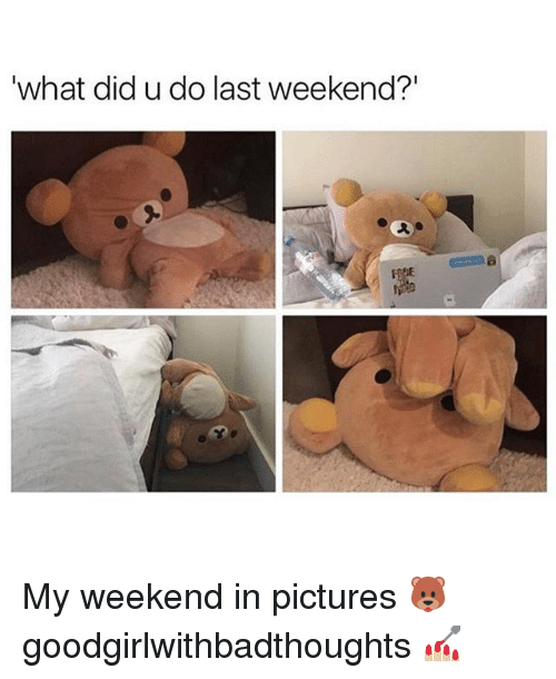 "Memes, Pictures, and 🤖: what did u do last weekend?"" My weekend in pictures 🐻 goodgirlwithbadthoughts 💅🏼"