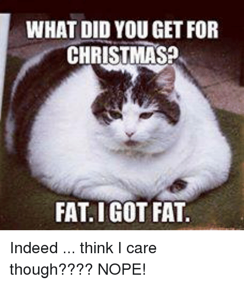 What did you get for christmas fat i got indeed think