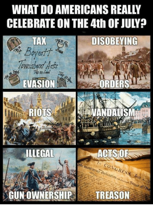Memes, 4th of July, and Treason: WHAT DO AMERICANS REALLY  CELEBRATE ON THE 4th OF JULY?  DISOBEYING  Boyett  lown  EVASION/  CORDERS  RIOTS  VANDALISM  ILLEGAL  ACTSOR  ration  GUN OWNERSHIP TREASON