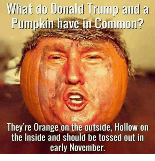 Image result for donald trump pumpkin meme