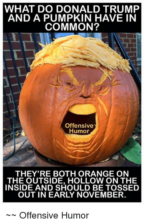 Donald Trump, Memes, and Common: WHAT DO DONALD TRUMP  AND A PUMPKIN HAVE IN  COMMON?  Offensive  Humor  THEY'RE BOTH ORANGE ON  THE OUTSIDE, HOLLOW ON THE  INSIDE AND SHOULD BE TOSSED  OUT IN EARLY NOVEMBER. ~~ Offensive Humor
