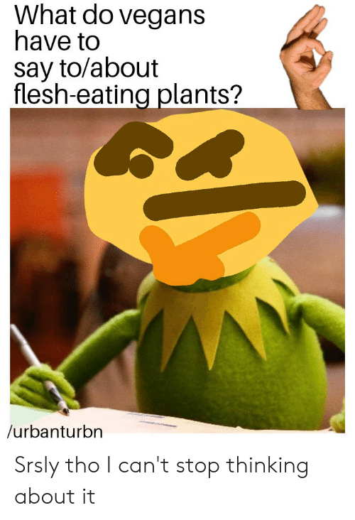 Dank Memes, What, and Stop: What do vegans  have to  say to/about  flesh-eating plants?  /urbanturbn Srsly tho I can't stop thinking about it