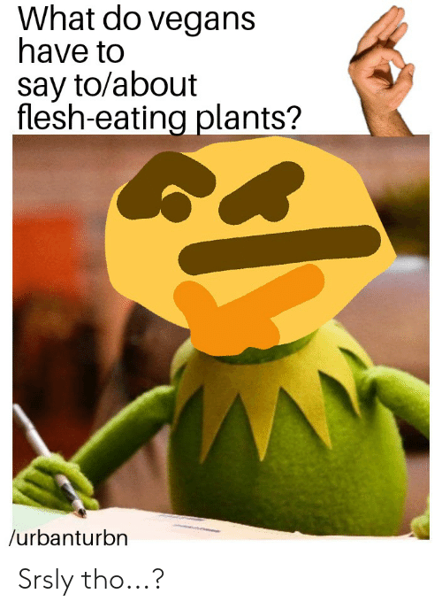 What, What Do, and Srsly: What do vegans  have to  say to/about  flesh-eating plants?  /urbanturbn Srsly tho...?