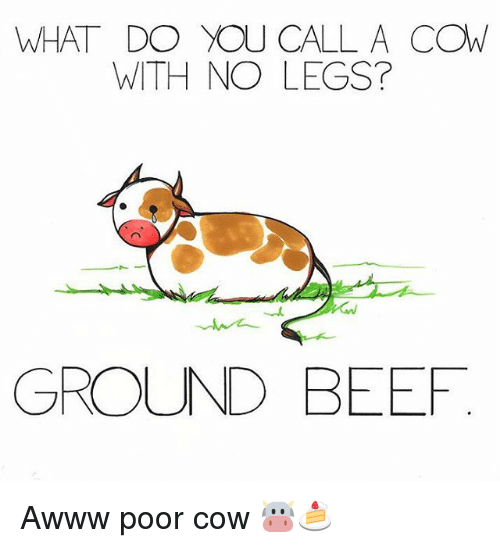 Image result for what do you call a cow with no legs