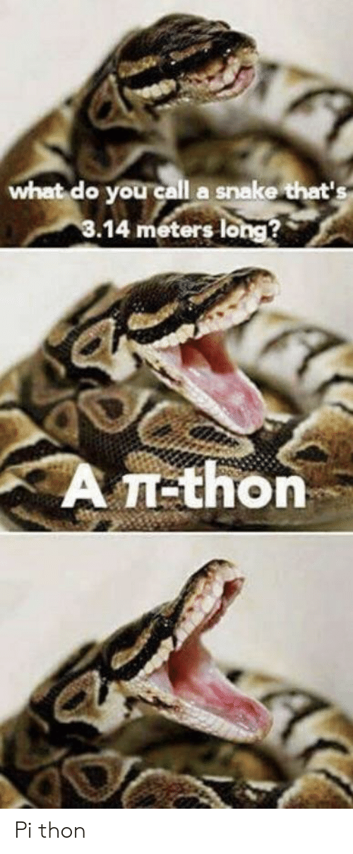What Do You Call a Snake That's 14 Meters Long? A π-Thon Pi
