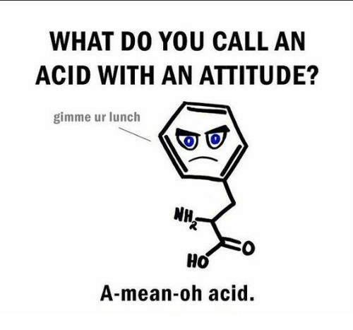 Chemist, Acid, and Means: WHAT DO YOU CALL AN  ACID WITH AN ATTITUDE?  gimme ur lunch  NH  Ho  A-mean-ooh acid.