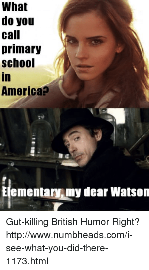 what do you call primary school in america elementary my 7823242 what do you call primary school in america elementary my dear watson