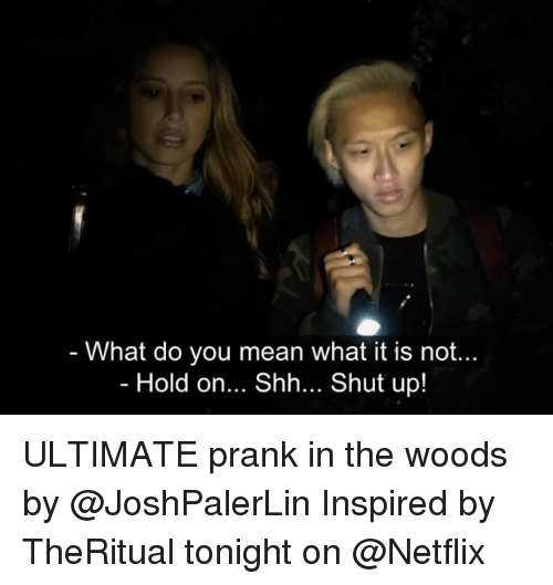 Memes, Netflix, and Prank: - What do you mean what it is not...  Hold on... Shh... Shut up! ULTIMATE prank in the woods by @JoshPalerLin Inspired by TheRitual tonight on @Netflix
