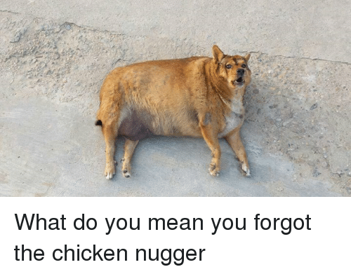 what do you do when you forget your iphone password what do you you forgot the chicken nugger chicken 21540