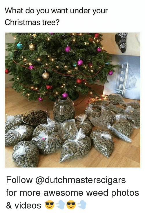 weed christmas tree and marijuana what do you want under your christmas tree