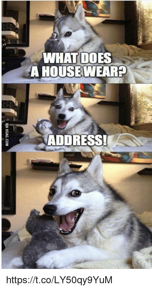 What Does, What, and Https: WHAT DOES  A HOUSEWEAR  ADDRESS! https://t.co/LY50qy9YuM