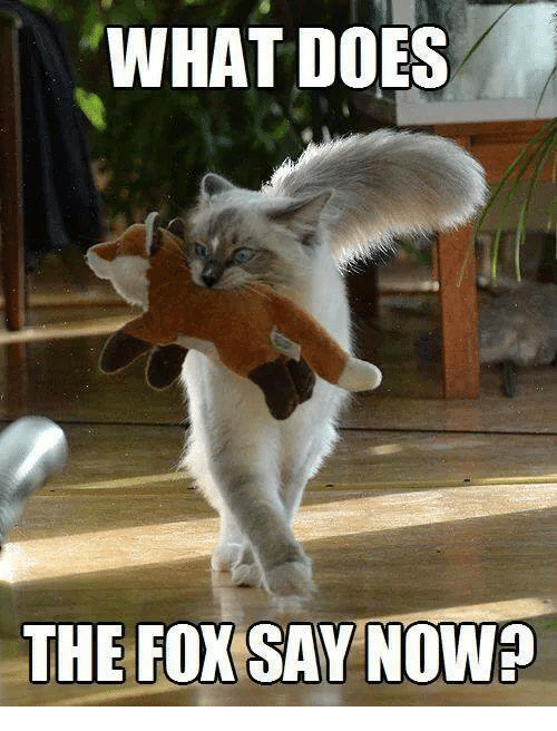 what does the fox say nowp 5785286 ✅ 25 best memes about what does the fox say what does the fox