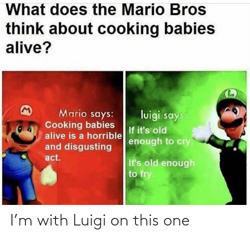 What Does The Mario Bros Think About Cooking Babies Alive