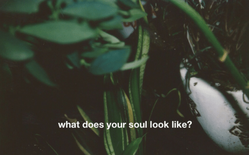 What Does, Soul, and What: what does your soul look like?