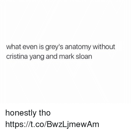 Memes, Grey's Anatomy, and 🤖: what even is grey's anatomy without  cristina yang and mark sloan honestly tho https://t.co/BwzLjmewAm