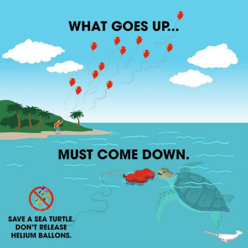 Memes, Turtle, and 🤖: WHAT GOES UP...  MUST COME DOWN.  SAVE A SEA TURTLE  DON'T RELEASE  HELIUM BALLONS.