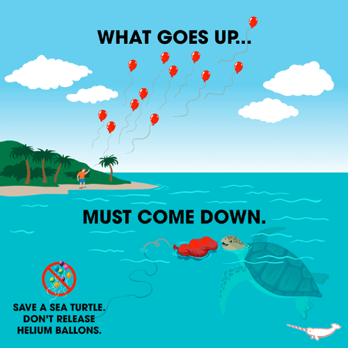 Memes, Turtle, and 🤖: WHAT GOES UP...  MUST COME DOWN.  SAVE A SEA TURTLE.  DON'T RELEASE  HELIUM BALLONS.