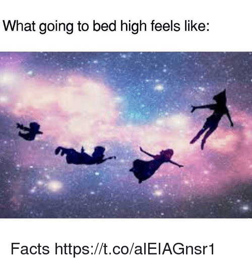 Facts, Memes, and 🤖: What going to bed high feels like: Facts https://t.co/alEIAGnsr1