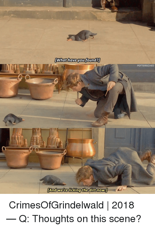 Memes, 🤖, and Dirt: What have youfoundaT  What have voufound  POTTERSCENES  [And were licking the  the dirt now ➙ CrimesOfGrindelwald   2018 — Q: Thoughts on this scene?