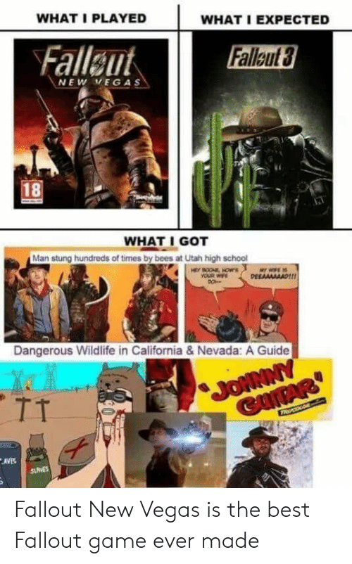 WHAT I PLAYED WHAT I EXPECTED NEW VEGAS 18 WHAT I GOT Man