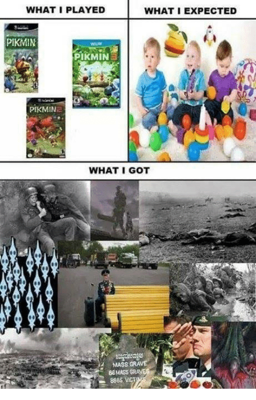 What I Played What I Expected Pikmin Pikmin Pikmin What I Got I