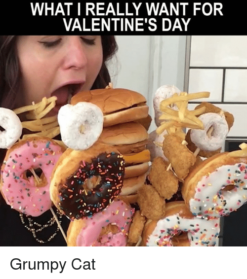 What I Really Want For Valentine S Day Grumpy Cat Meme On Me Me