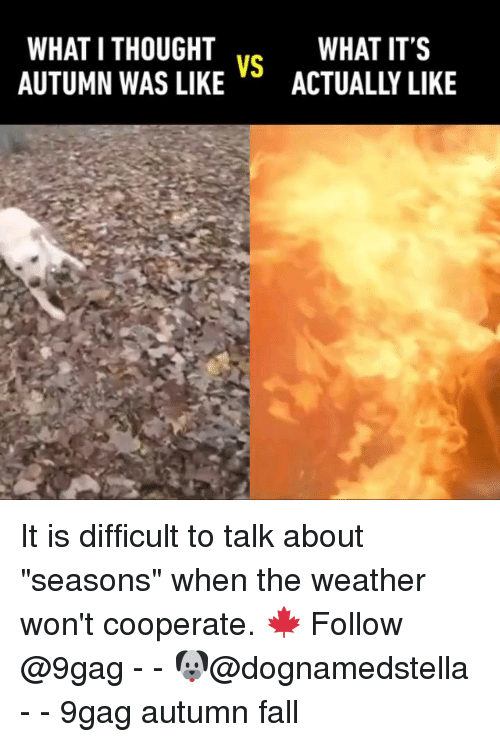 what i thought autumn was likeactually like what its vs 27948421 ✅ 25 best memes about autumn autumn memes
