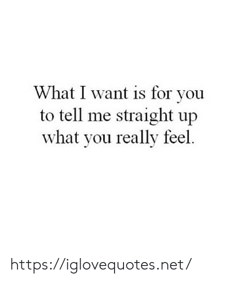 Net, You, and What: What I want is for you  to tell me straight up  what you really feel https://iglovequotes.net/