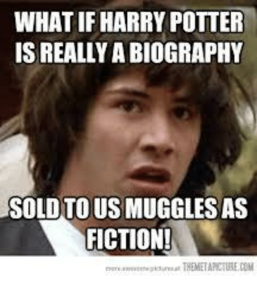 meme potter What harry if