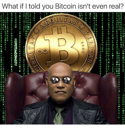 Dank Memes, Bitcoin, and You: What if I told you Bitcoin isn't even real?  8L6  中6  1  44ヶ  ャ£中台  @SPETTACOMEDY  3