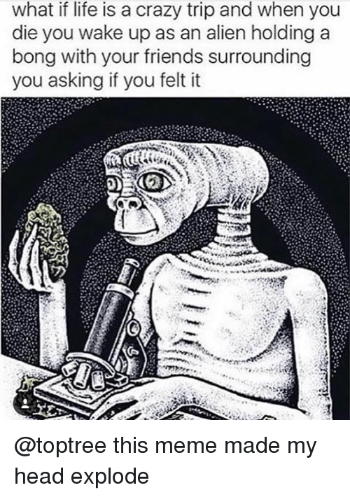 Crazy, Friends, and Head: what if life is a crazy trip and when you  die you wake up as an alien holding a  bong with your friends surrounding  you asking if you felt it @toptree this meme made my head explode