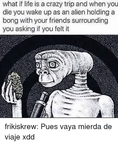 Crazy, Friends, and Gif: what if life is a crazy trip and when you  die you wake up as an alien holding a  bong with your friends surrounding  you asking if you felt it frikiskrew:  Pues vaya mierda de viaje xdd